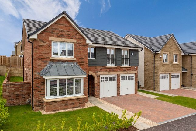 Thumbnail Detached house for sale in Harrowslaw Drive, Hamilton