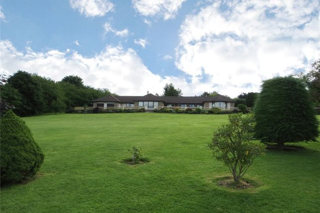 Thumbnail Bungalow for sale in Newton Of Ferintosh, Conon Bridge, Dingwall, Ross-Shire