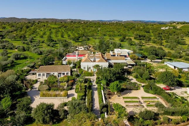 Thumbnail Country house for sale in Fazenda Nova, Portugal