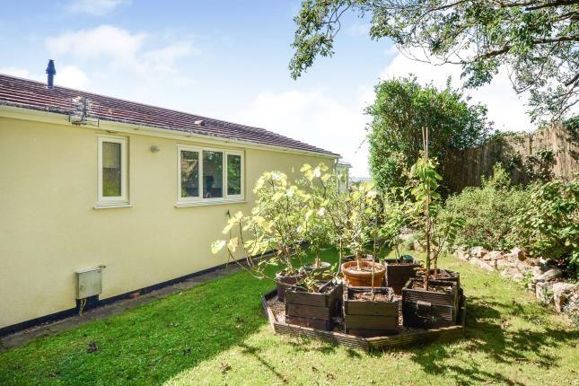 Garden of Totnes Road, Paignton, Devon TQ4
