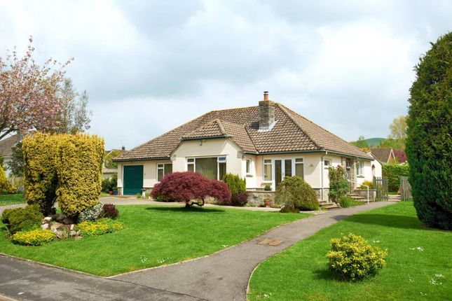 Thumbnail Bungalow to rent in Knotts Close, Child Okeford, Blandford Forum, Dorset