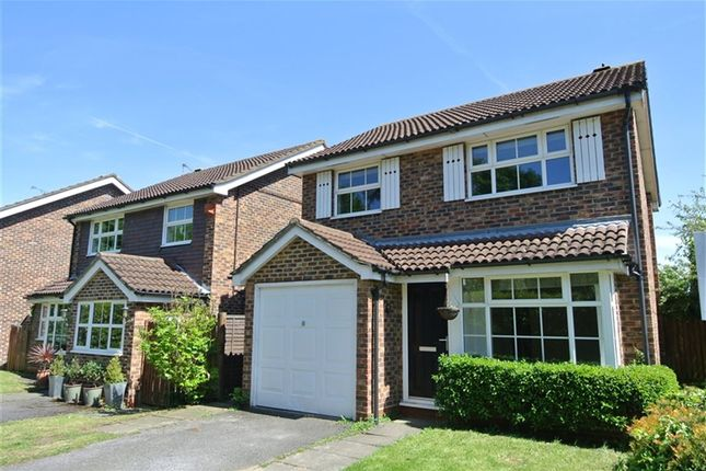 Thumbnail Property to rent in Cabbell Place, Addlestone, Surrey