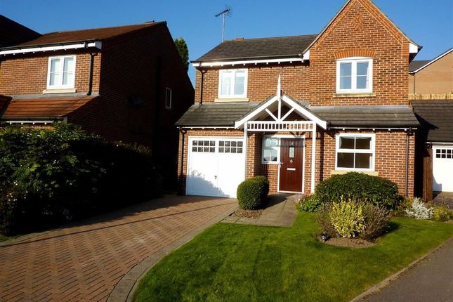 Thumbnail Detached house to rent in The Lovatts, Kidsgrove, Stoke-On-Trent