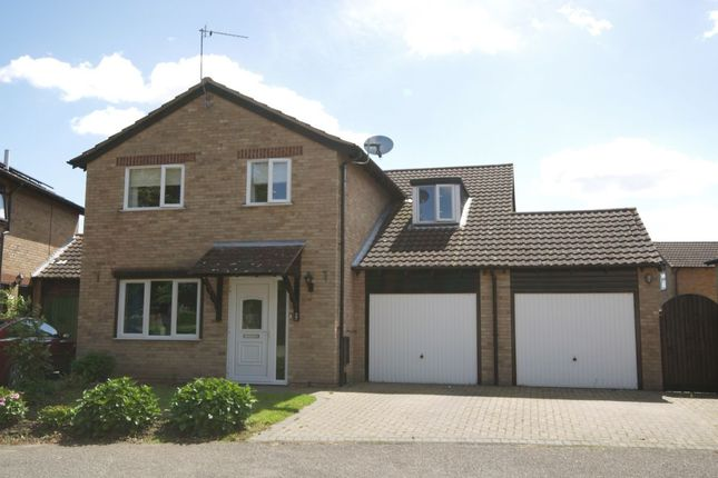 Thumbnail Detached house for sale in Swansgate, Old Catton, Norwich
