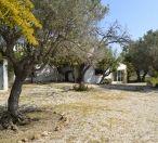 Jav3584 - Tarraula Villa 13