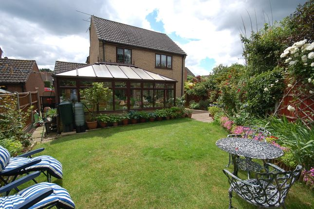 Thumbnail Detached house for sale in Adeane Meadow, Mundford, Thetford