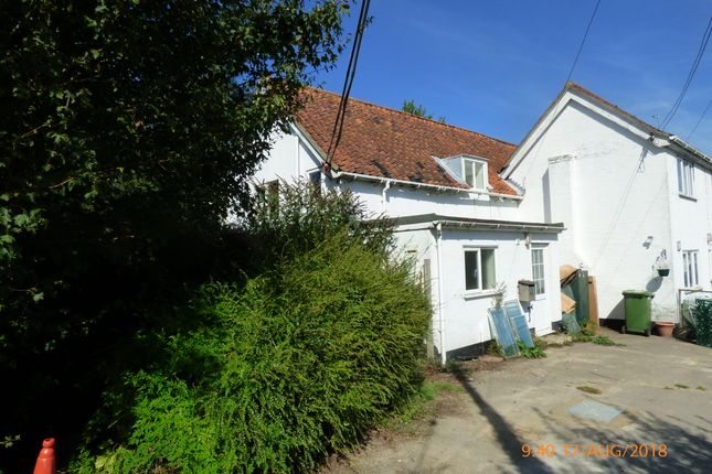 Thumbnail Semi-detached house to rent in Burgh St. Peter, Beccles