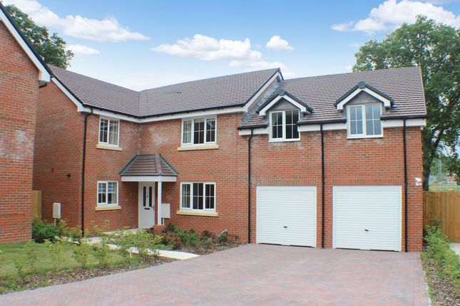 Thumbnail Detached house for sale in Maidman Place, Hedge End, Southampton