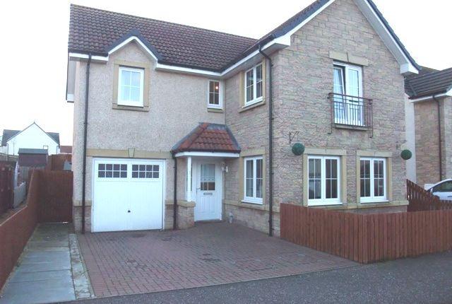 Thumbnail Detached house to rent in Hilton Lane, Cowdenbeath, Fife