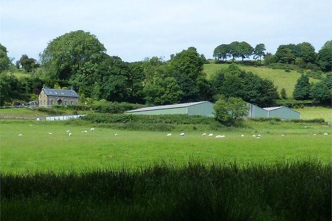 Thumbnail Land for sale in Parc Cwmbarre Farm, Rhydlewis, Llandysul, Ceredigion