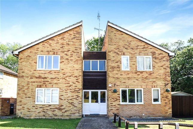 Studio for sale in Estcots Drive, East Grinstead, West Sussex RH19