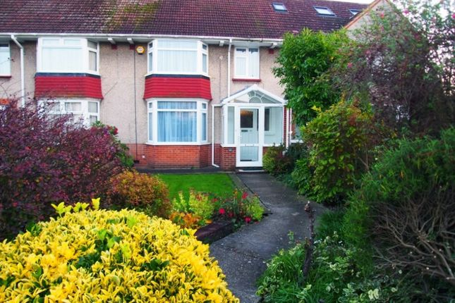 Thumbnail Terraced house to rent in Goldsmith Road, Broadwater, Worthing