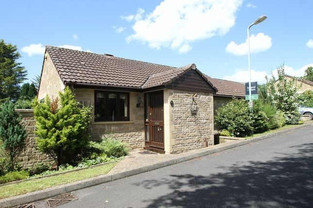 Thumbnail Detached bungalow for sale in Singleton Court, Wells