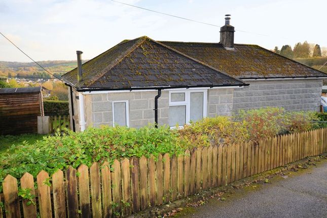Thumbnail Detached bungalow to rent in Bolt House Close, Tavistock