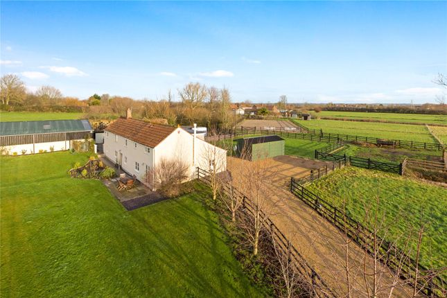 Thumbnail Equestrian property for sale in Fordgate, Bridgwater, Somerset