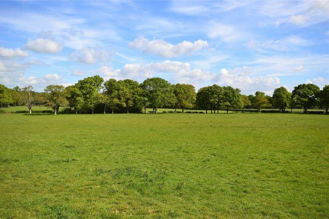 Picture No. 02 of Ridgelands Farm, Kent Street, Wineham, Nr Cowfold RH13
