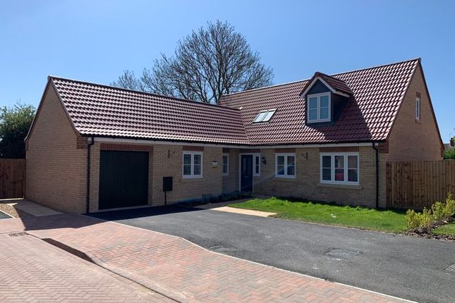 Thumbnail Detached house for sale in The Folkingham, Wardentree Lane, Pinchbeck, Spalding