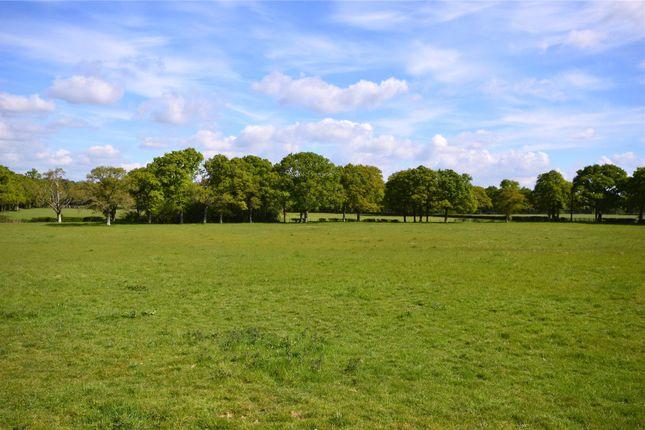 Picture No. 01 of Ridgelands Farm, Kent Street, Cowfold, West Sussex RH13