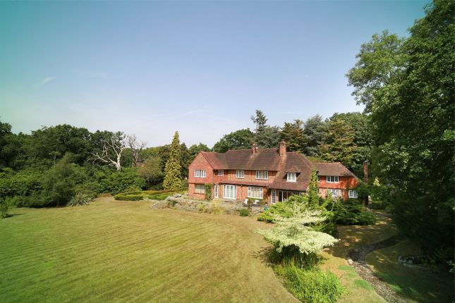Thumbnail Detached house for sale in Bagwell Lane, Odiham, Hook