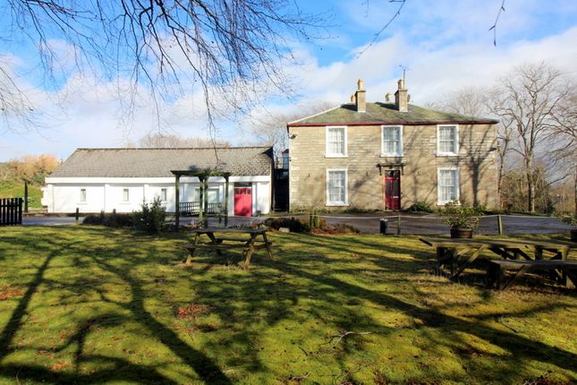 Thumbnail Detached house for sale in Morven Guest House & Self Catering, Alness, Ross-Shire