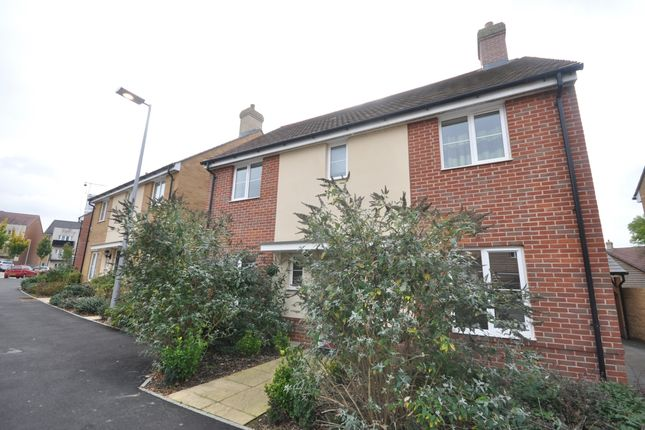Thumbnail Detached house to rent in Evergreen Way, Ashford