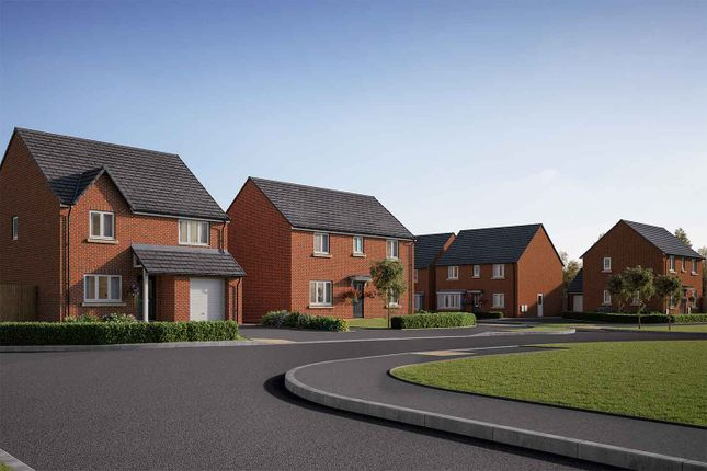 "Thumbnail Detached house for sale in ""The Collcutt"" at Roecliffe Lane, Boroughbridge, York"