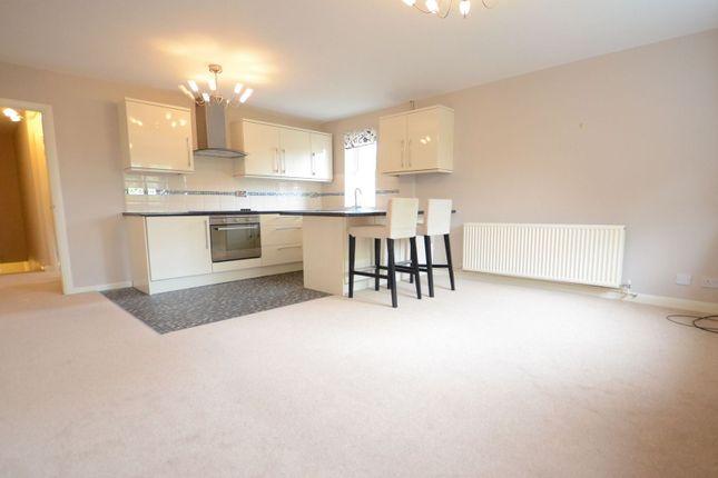 Thumbnail Flat to rent in Elderberry Bank, Basingstoke