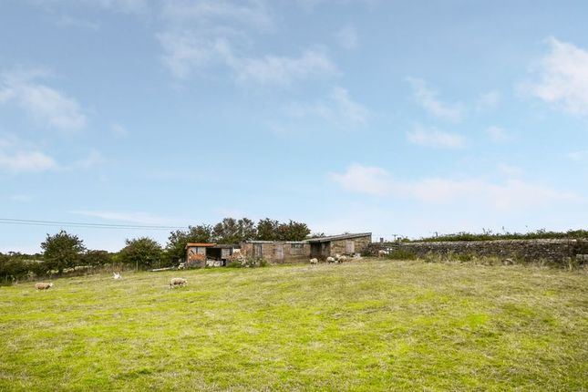 Thumbnail Land for sale in Dunsley, Whitby
