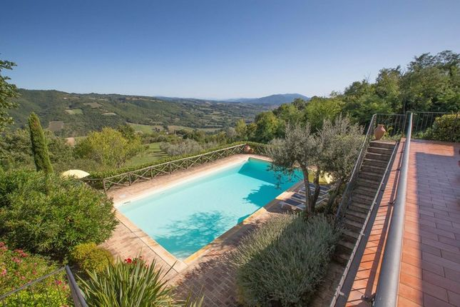 Montone A Piedi, Montone, Terrace And Pool With View