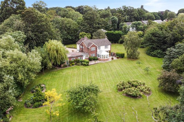 Thumbnail Detached house for sale in Kelvedon Road, Little Braxted, Witham, Essex