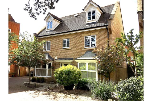 Thumbnail Detached house for sale in Septimus Drive, Colchester