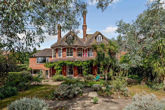 Thumbnail Detached house for sale in High Street, Dunwich, Saxmundham, Suffolk