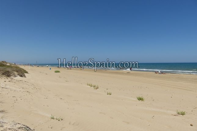 Thumbnail Commercial property for sale in Oliva, Valencia, Spain
