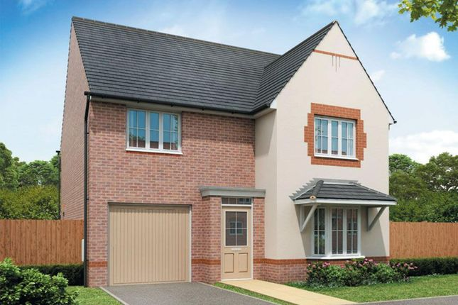 "Thumbnail Detached house for sale in ""Barkestone"" at Hollygate Lane, Cotgrave, Nottingham"