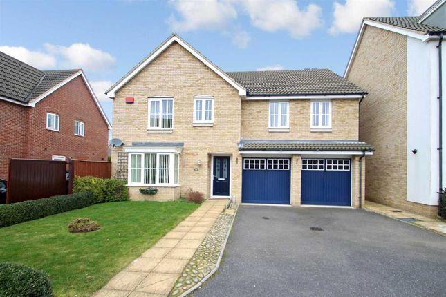 Thumbnail Detached house for sale in Thomas Crescent, Grange Farm, Kesgrave, Ipswich