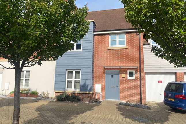 Thumbnail Property to rent in Vales Place, Cambridge
