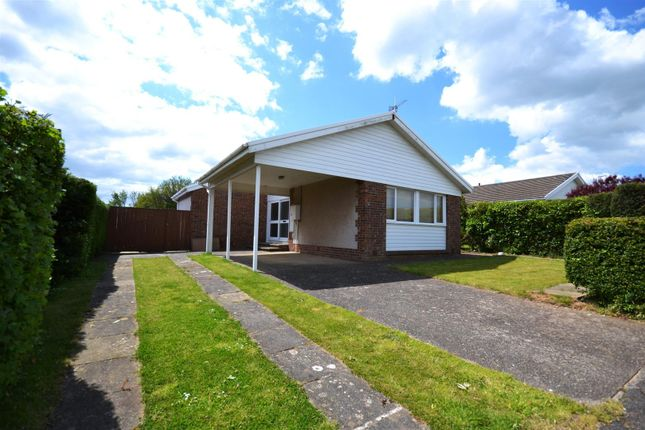 Thumbnail Detached bungalow to rent in Skomer Drive, Milford Haven