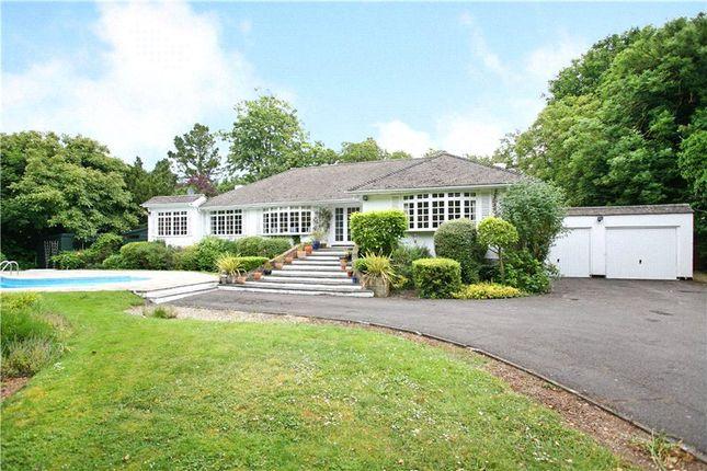 Thumbnail Detached bungalow for sale in Monkey Island Lane, Bray, Maidenhead, Berkshire