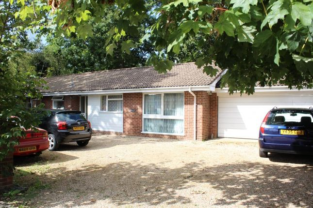 4 bed bungalow for sale in Shawfield Road, Ash