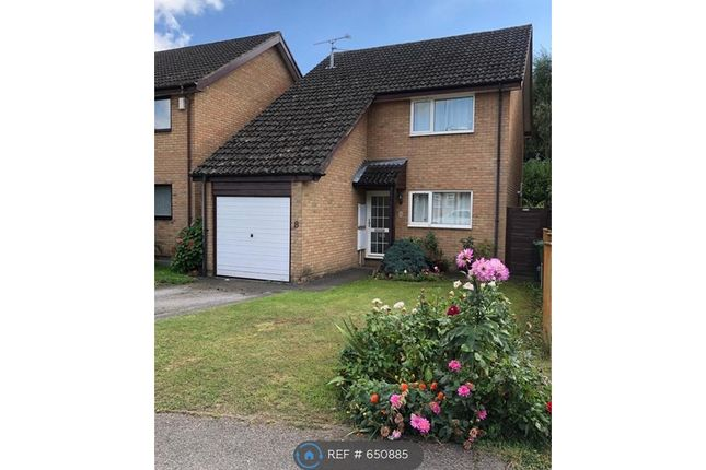 3 bed detached house to rent in Carston Grove, Calcot, Reading RG31