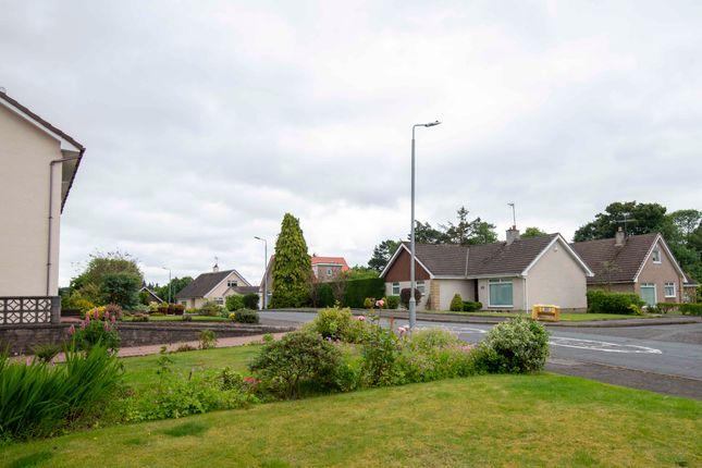 Outlook of Dunedin Drive, Hairmyres, East Kilbride G75