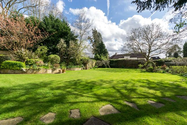 Garden of The Drive, Coombe, Kingston Upon Thames KT2