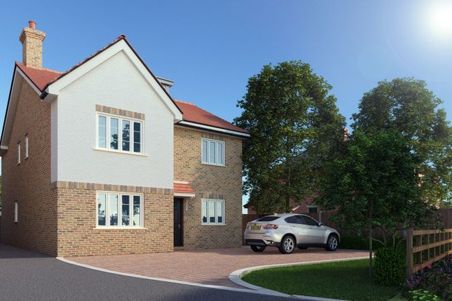 Thumbnail Detached house for sale in Church Road, Westoning