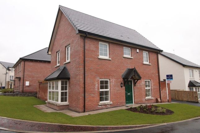 Thumbnail Detached house for sale in Blackwood Manor, Mountain Road, Newtownards
