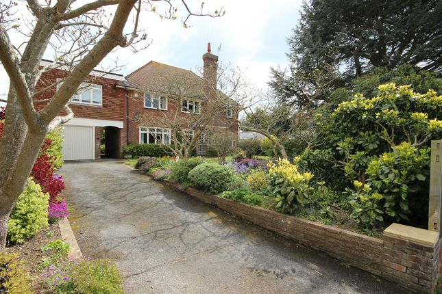 Thumbnail Detached house for sale in Chyngton Gardens, Seaford