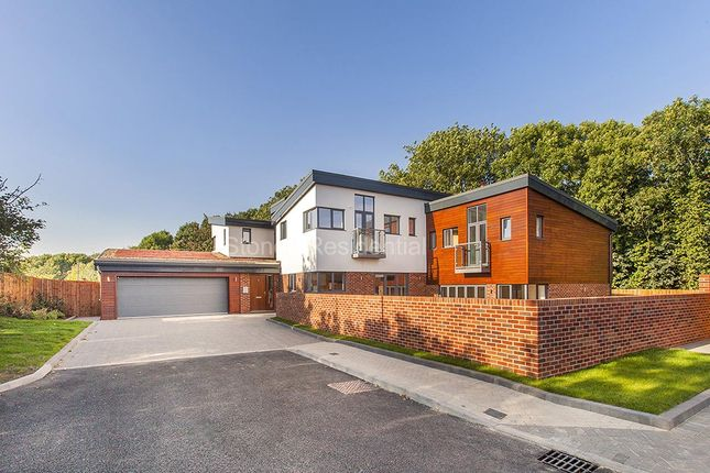 Thumbnail Detached house for sale in Sandy Lane, Bushey