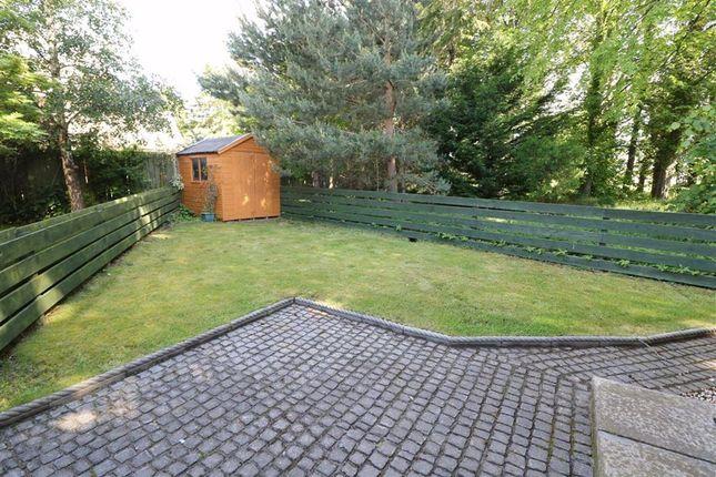 Garden of Jock Glass Courtyard, Elgin, Moray IV30