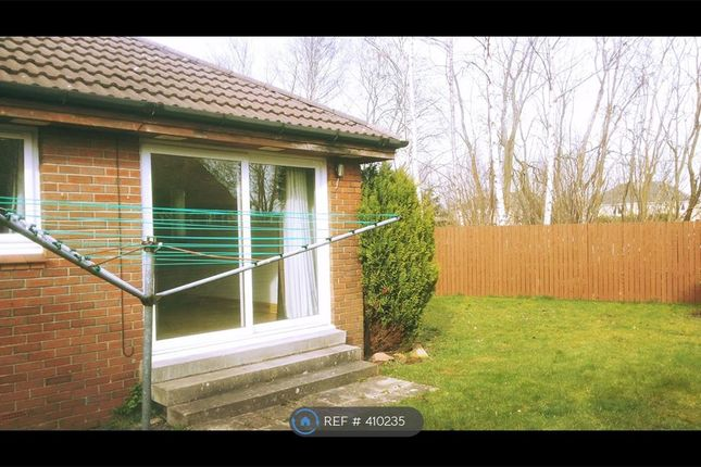 Thumbnail Bungalow to rent in Arnott Quadrant, Motherwell