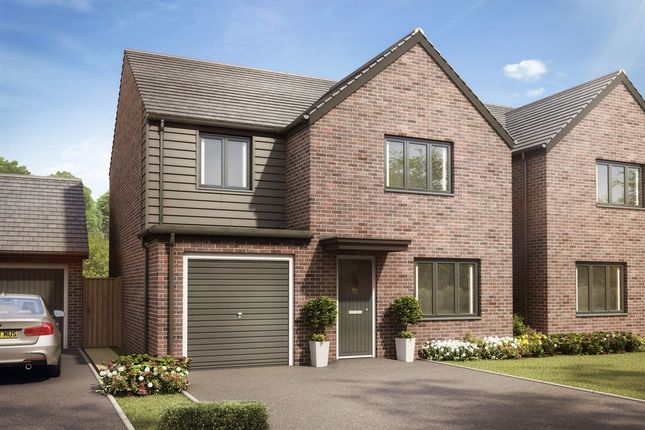 "Thumbnail 4 bed detached house for sale in ""The Roseberry"" at Llantrisant Road, Capel Llanilltern, Cardiff"