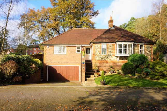 Thumbnail Detached bungalow for sale in Vicarage Lane, Haslemere